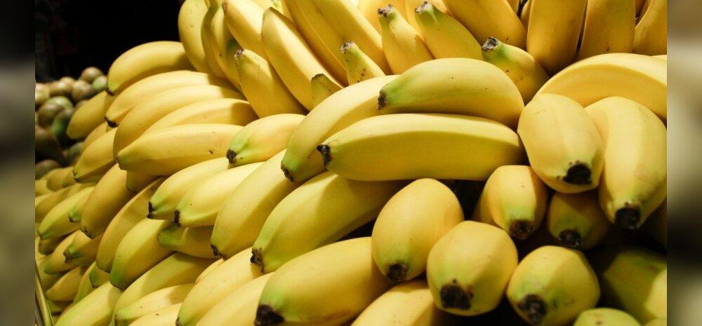 Minu Tenerife: punased-, kollased-, rohelised- ja plekilised banaanid — miks neid nii palju on?!