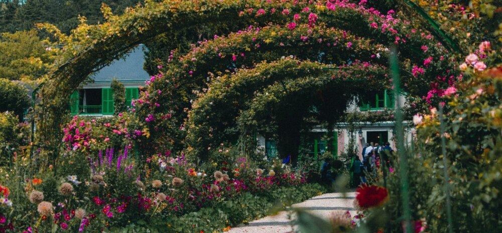 FOTOD JA VIDEOD   Aiagurmaanile — 11 avastamist väärt aeda