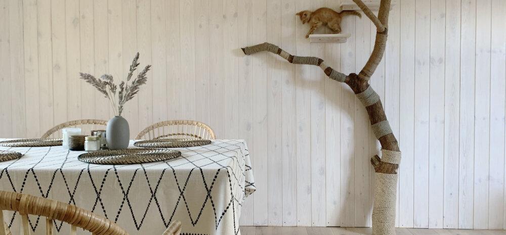 APPI, me ostsime maja   Kuidas teha vanast kuivanud sirelist kassile ronimispuu