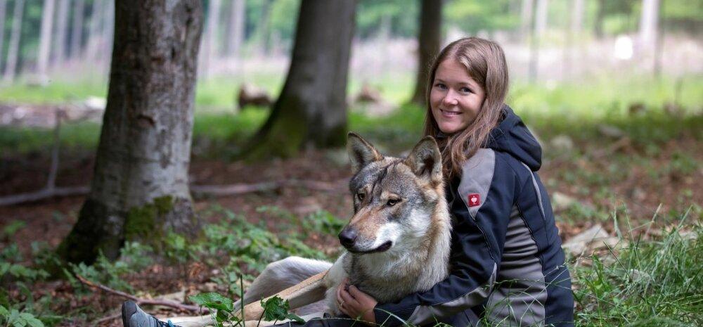 Hunditeadlane Laura Kiiroja: ükski loom ei ründa hoiatamata