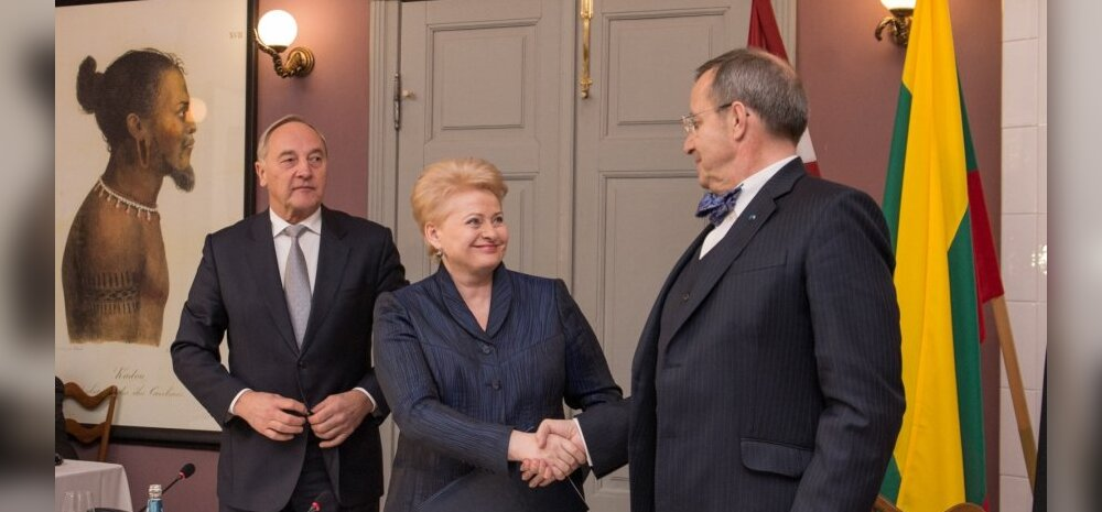 Американофил, противница России и неопределившийся. Как президенты стран Балтии провели 2014 год