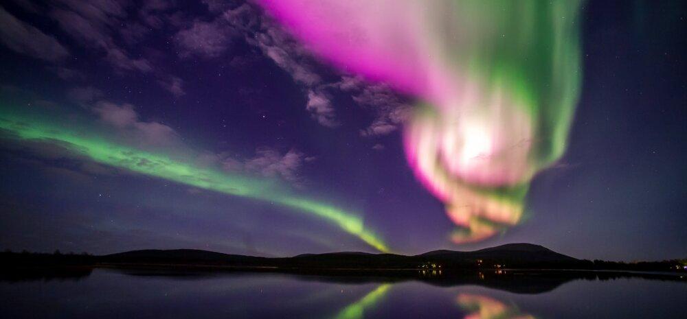 FOTO: Eile ilmusid taevasse kõige roosamad virmalised, mida Lapimaal elav fotograaf on kunagi näinud