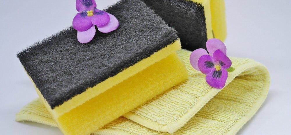 Щетки, губки и салфетки: почему они не годятся для уборки?