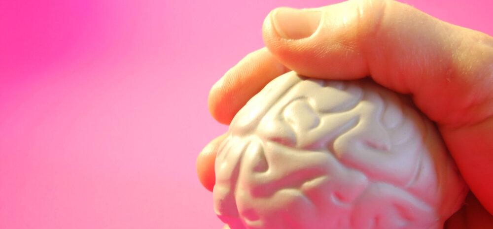 Teaduslikult tõestatud: kõrge IQ-ga inimesed ei vaja nii palju sõpru kui tagasihoidlikuma arukuskvoodi omanikud