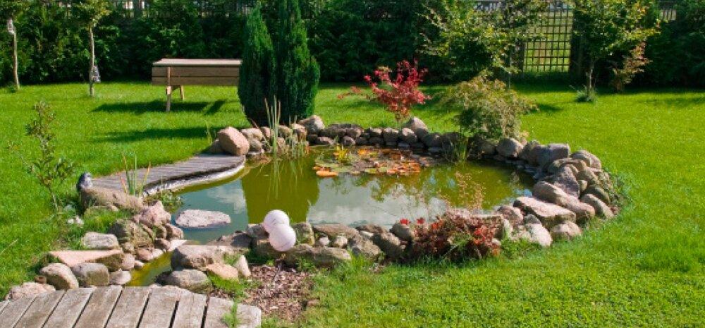 Veesilm toob aeda elu