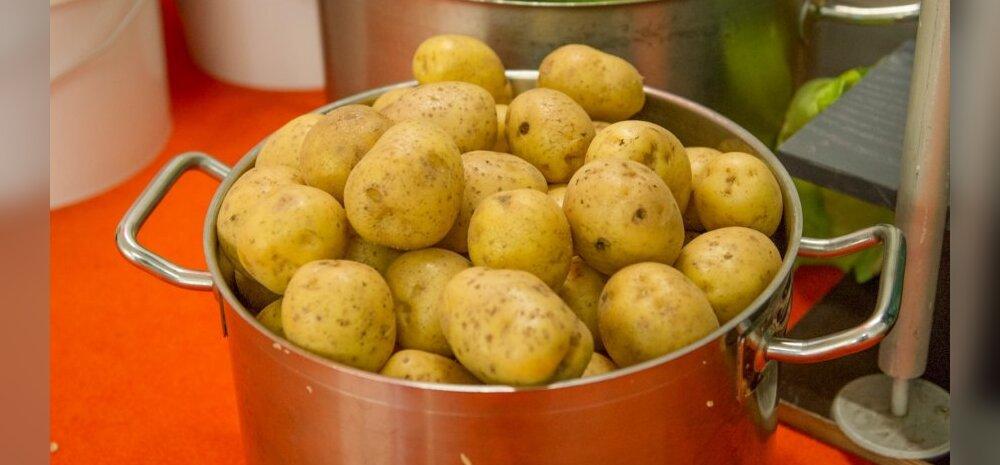Kas ka sul on aneemia? Söö neid 13 toitu, mille hulgas on üllataval kombel ka vana hea kartul