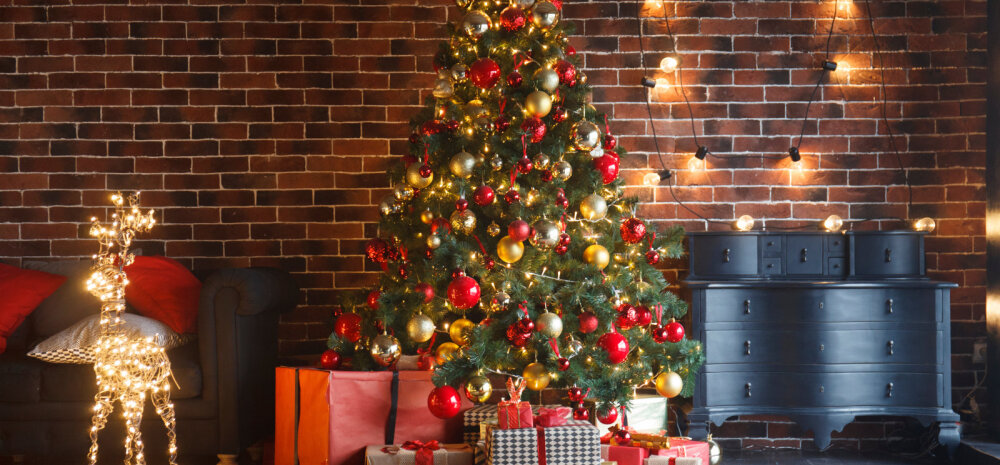 НА ЗАМЕТКУ | А вы знали, как появилась елка и чем её раньше украшали?