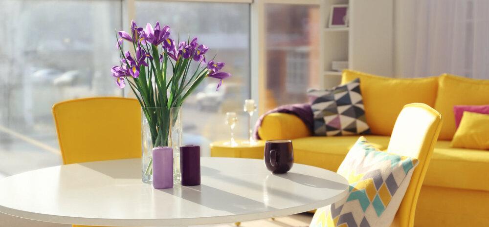 Центр внимания: 6 советов по украшению гостиной