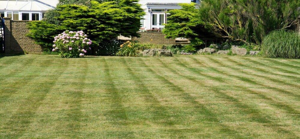 Совет специалиста: переросшую траву косите дважды!