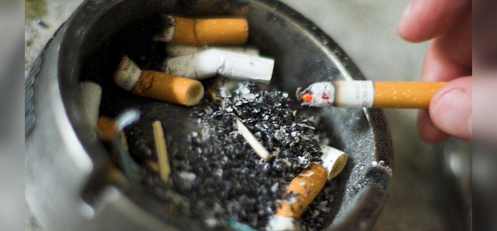 WHO: suitsetamine tapab igal aastal kuus miljonit