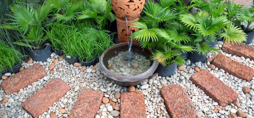 FOTOD │ Veesilm kaunistab aeda ja loob meeleolu