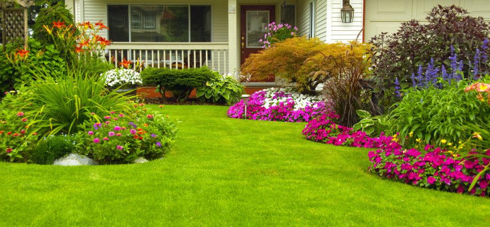 12 suuremat viga, mida aeda kujundades tegema kiputakse