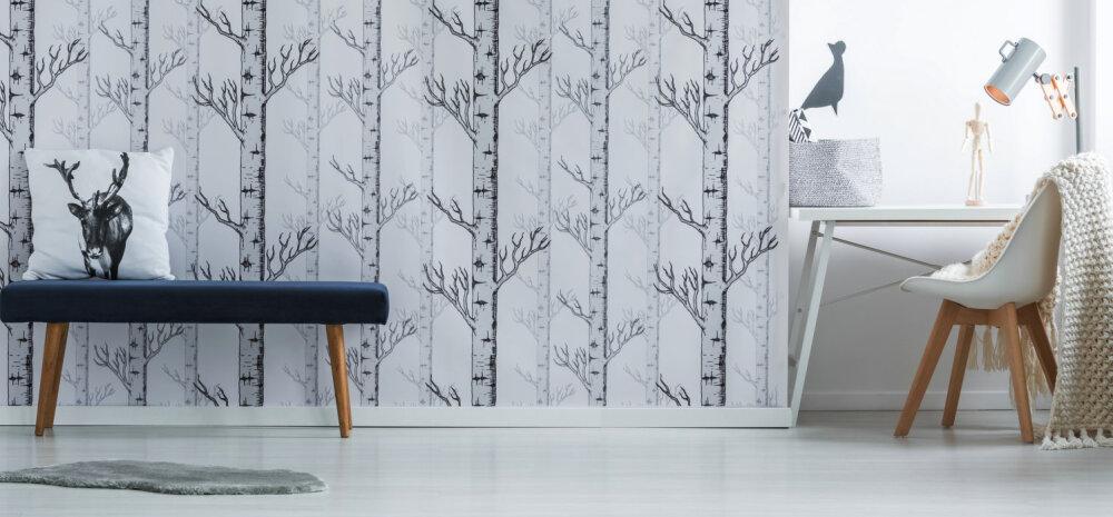 Seinad puhtaks! Asjalikud nipid, kuidas puhastada värvitud, tapeeditud ja paneelidega seina