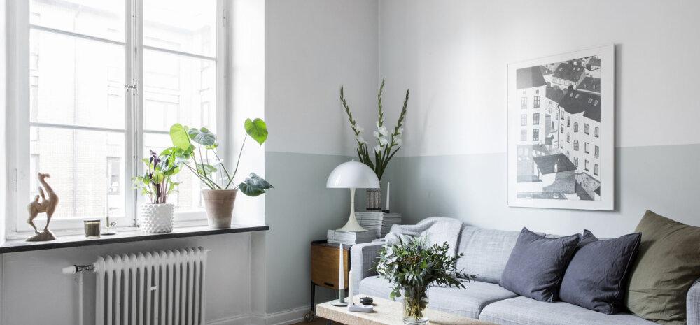 Ühetoaline korter, mis paistab silma unustatud värvilahendustega