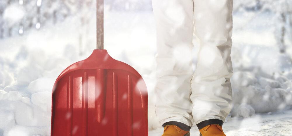 Выбираем лопату для уборки снега: материалы и характеристики (+ВИДЕО)
