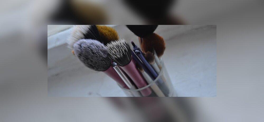 Anna Elisabethi ilublogi: Mis mõttes sa oma meigipintsleid ei pese?