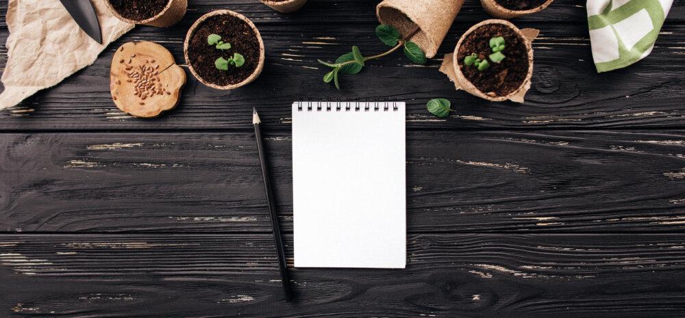 NÕUANDEID AIAPIDAJALE | Küsimused, millele enne algavat aiahooaega mõelda tasuks