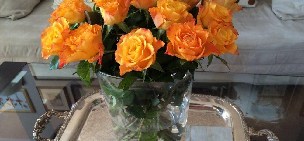13 простых советов: как продлить жизнь букету цветов
