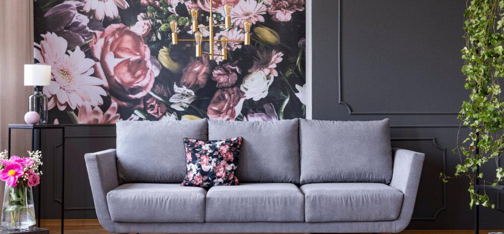 Seitse lihtsat nippi, kuidas oma kodule luksuslikum välimus anda