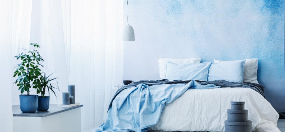 Seitse koju sobivat värvi, mis mõjuvad rahustavalt ja tõstavad tuju