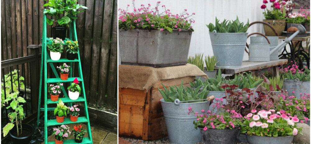 Kümme suurepärast ideed, kuidas kujundada aiast mõnusalt omapärane paik