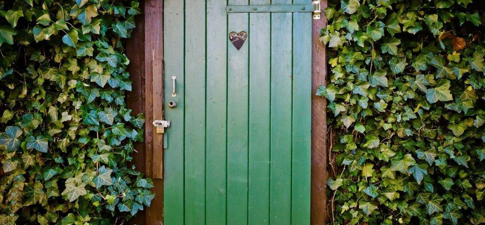 ВИДЕО | Новая жизнь старых дверей