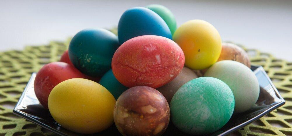 Värvitud munad