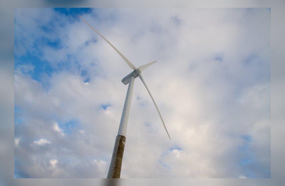 Roheenergia tootjad kutsuvad valitsust üles mitte vähendama taastuvenergia tasusid