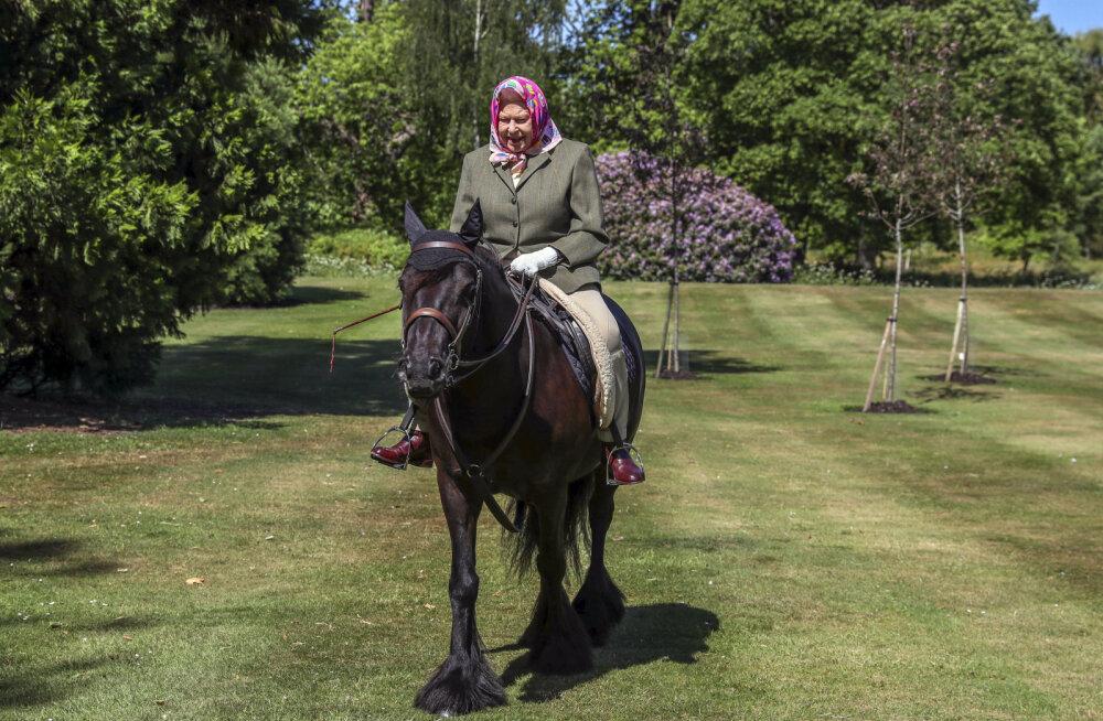 Елизавета II вышла из самоизоляции верхом на пони