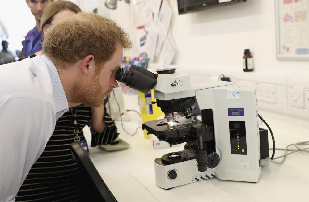 WHO: Tripper muutub järjest targemaks, avastatud on ravimatuid haigusjuhtumeid