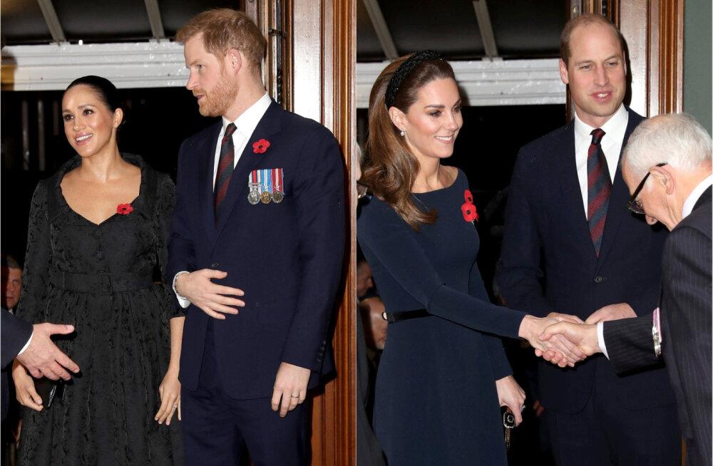 Kehakeeleekspert paljastab! Kumb vend on tegelikult tõeline riiukukk - kas William või Harry?