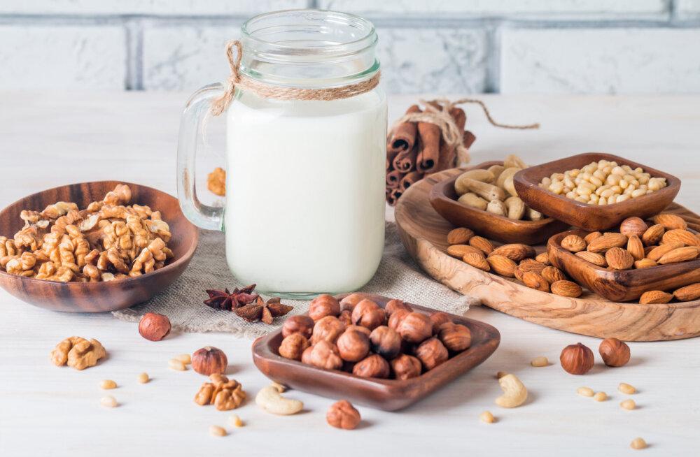 Lihtne nipp, kuidas valmistada ise pähkli-, seemne ja kaerapiima