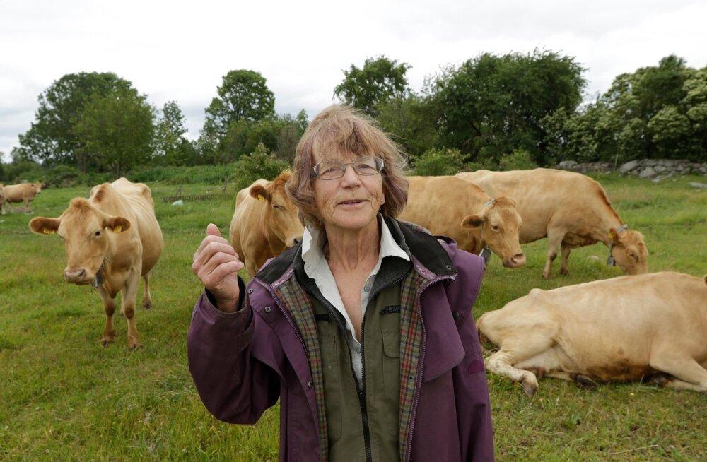Aasta põllumees 2015 kandidaat Liia Sooäär