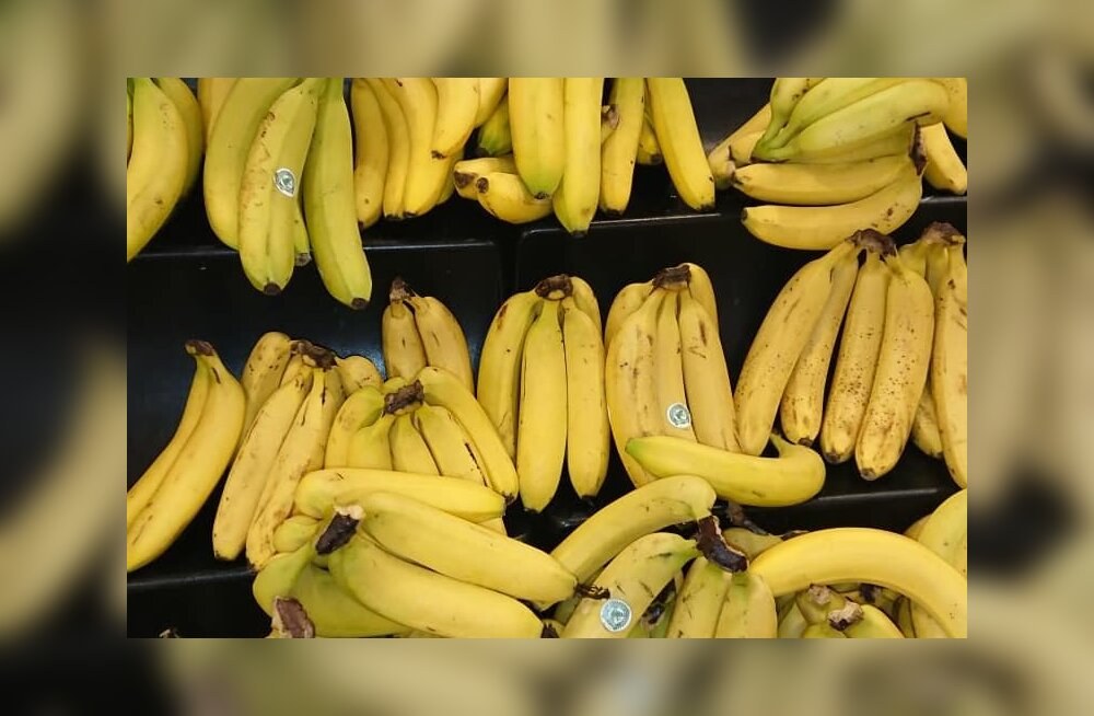 Banaanid Kadaka Selveris