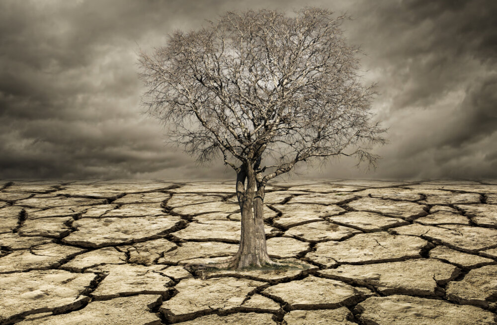 Kliima soojeneb kiiremini kui viimase 2000 aasta jooksul