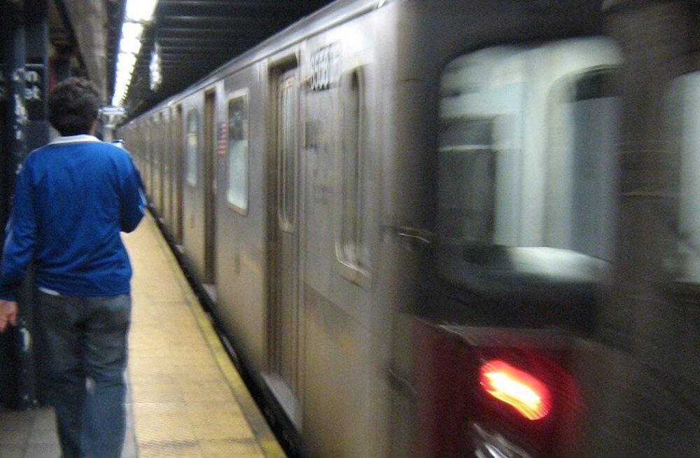 New Yorgi metroost leiti 15 152 eluvormi DNAd, enam kui pooled neist teadusele tundmatud