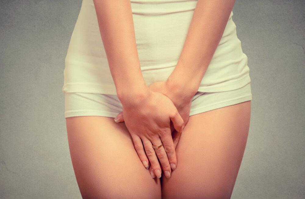 Naised, pange hoolega tähele: intiimpiirkonna hügieen on väga oluline ja on 7 põhimõtet, mida ei tohi unustada