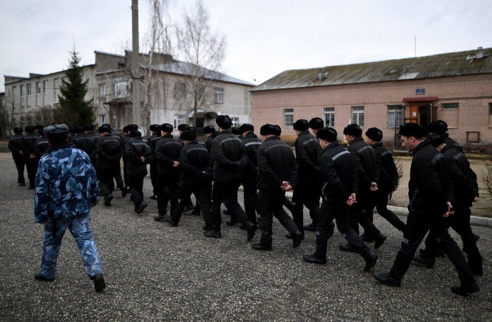 Vene riigiduumale tehti ettepanek keelata kriminaalse subkultuuri propaganda