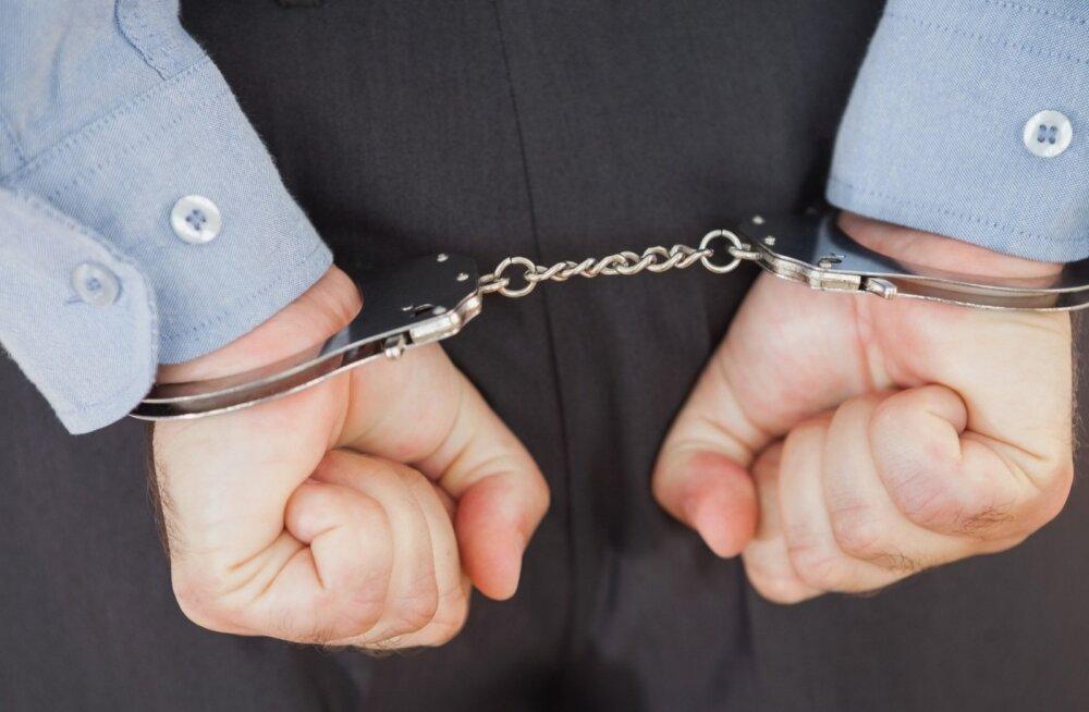 Vahistamine.