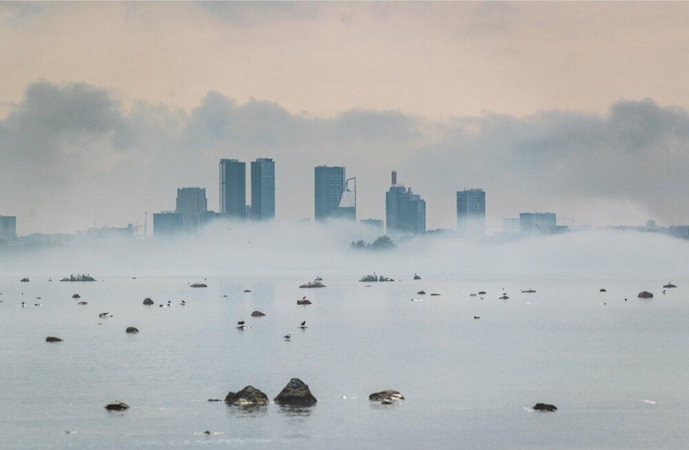 Uduloor Tallinna lahel