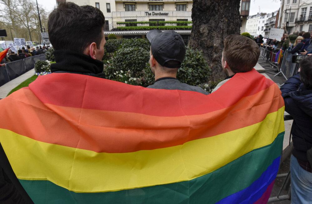 ЛГБТ-активисты обжаловали в ЕСПЧ запрет гей-парада в Псковской области