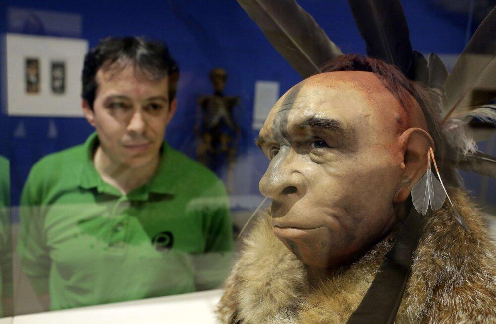 Neandertallased paaritusid mitmete inimliikidega