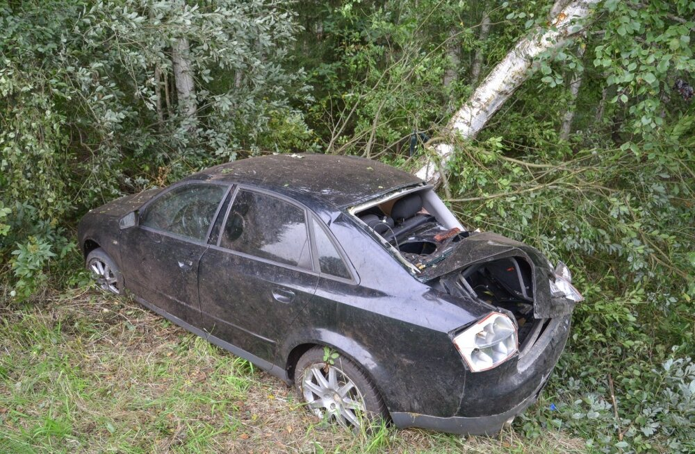 Audi sõitis Viljandimaal vastu puud