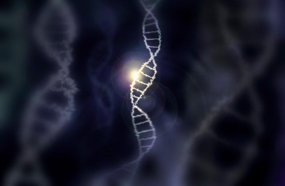 Teadlased reastasid populaarseimad geenid