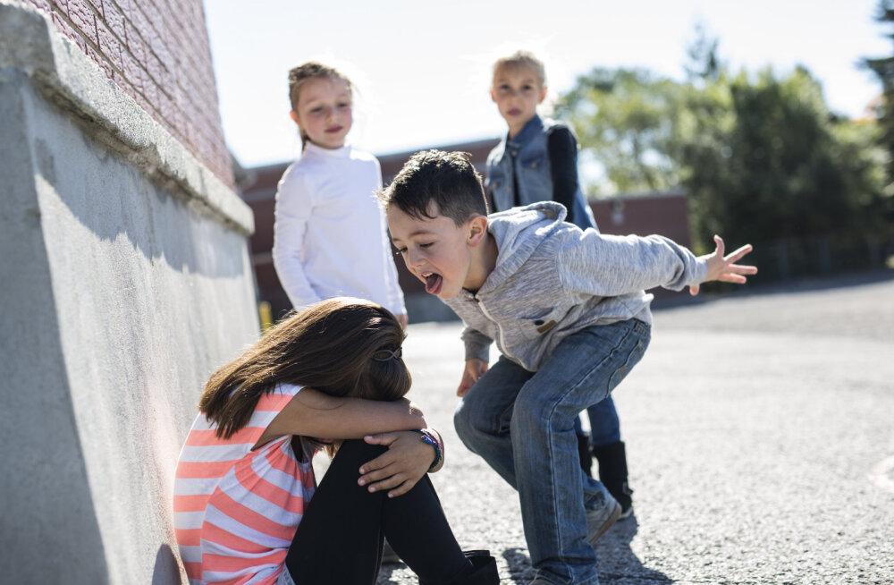 Koolikiusamise ohvriks langenud tütre ema: olen emalõvi kombel läinud oma last kaitsma