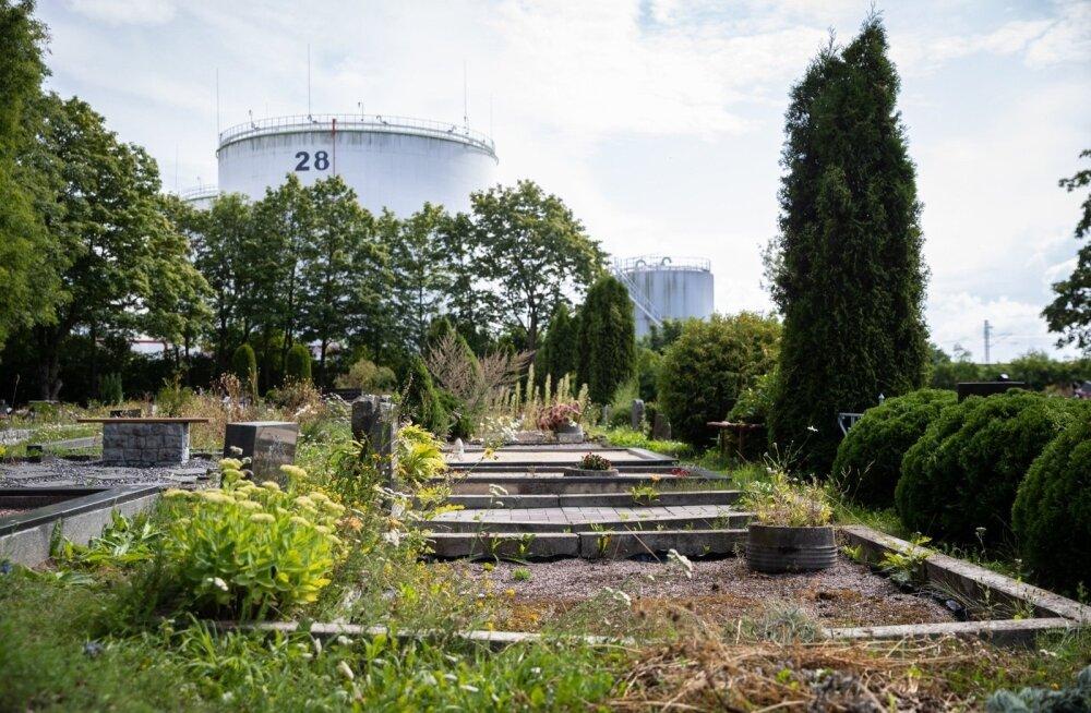 """Чудесное преображение. Инвесторы утверждают, что цены на недвижимость в Палдиски взлетят до небес, а туристы недовольны отсутствием """"советских ужасов"""""""