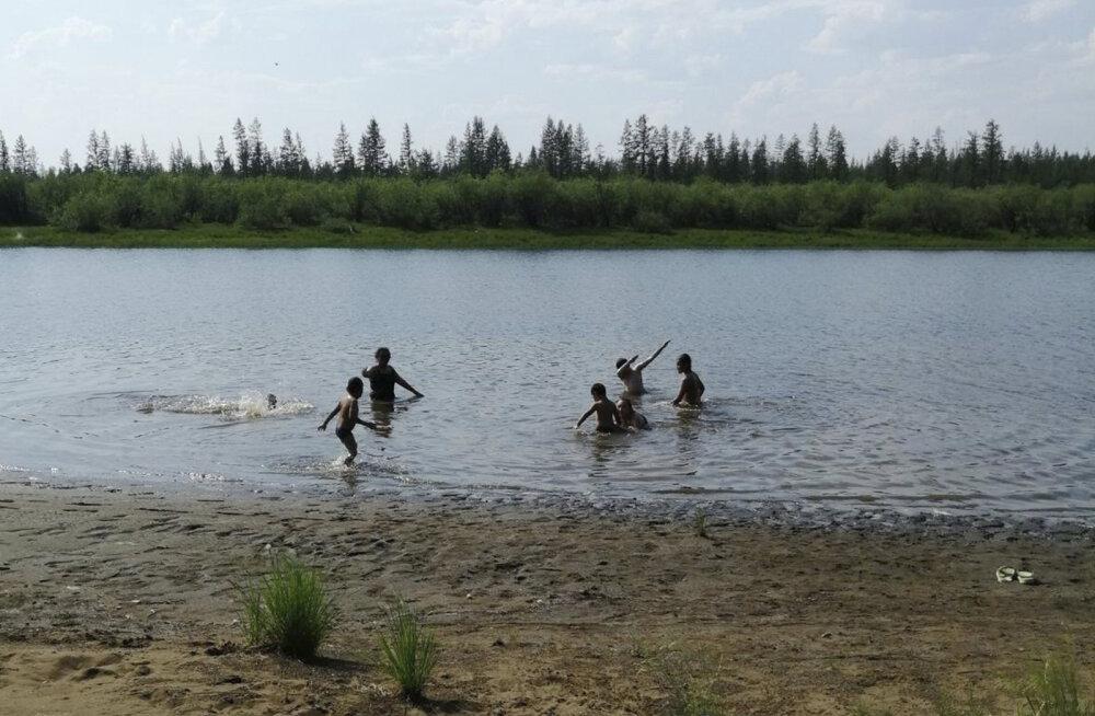 В Сибири — не просто жара! Немецкий ученый озадачен климатическим феноменом