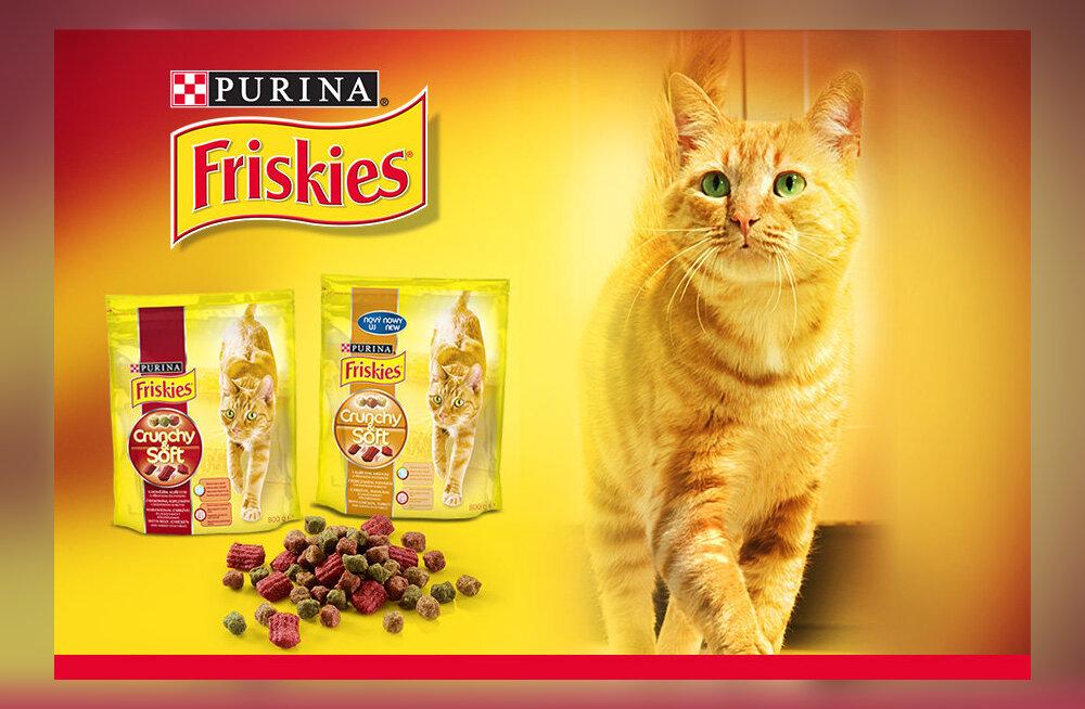 94b25cab7ef Kas pakkuda kassile krõbedaid või hoopis pehmeid palasid? - DELFI ...