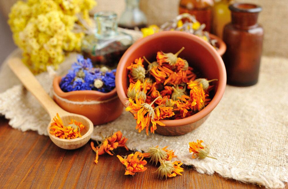Kuus imelist kodust retsepti, kuidas maitsetaimedega end ravida