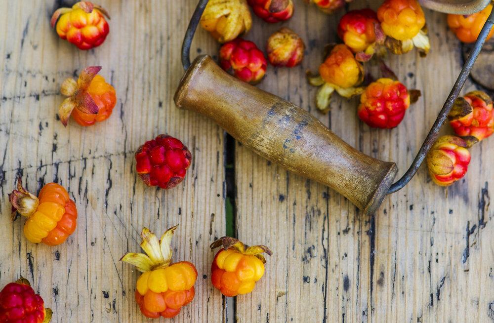 Praegu on murakate hooaeg! Mille poolest on see imemari kasulik ja mida murakast valmistada?